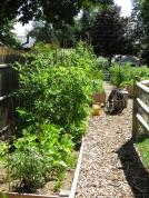 sunny garden small